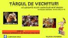 TARGUL DE VECHITURI