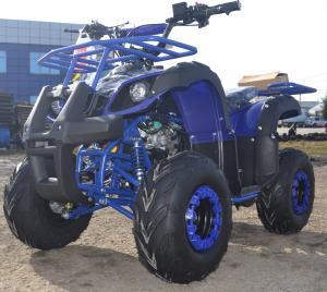 PROMOTIE : ATV NITRO MOTORS TORONTO MIDDI  M7, 2021, AUTOMAT